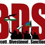 Una empresa agrícola sudafricana rompe sus relaciones con la israelí Hadiklaim por su complicidad en la ocupación