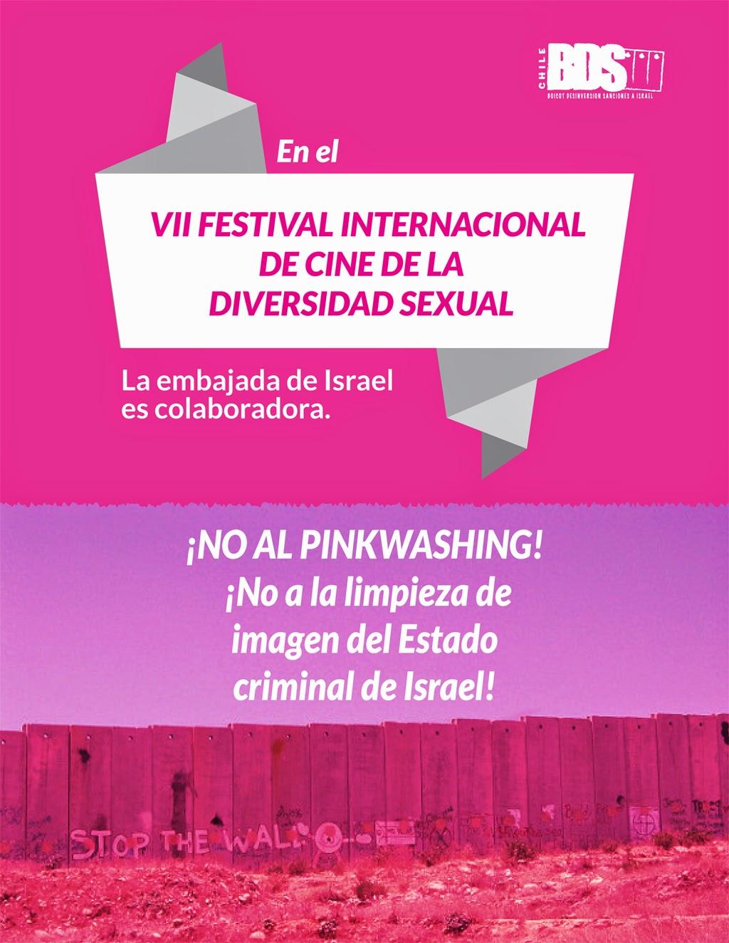 Chile Pinkwashing